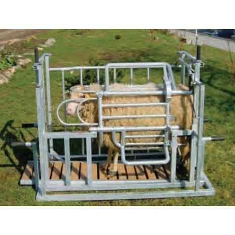M10-fixačná klietka otočná pre ovce